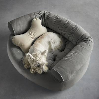 9 best pet beds for dogs and cats chic and comfy pet beds they 39 ll love Comfy couch dog bed