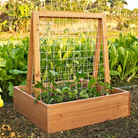 10 Best Raised Garden Beds in Spring 2017 Garden Beds Boxes and