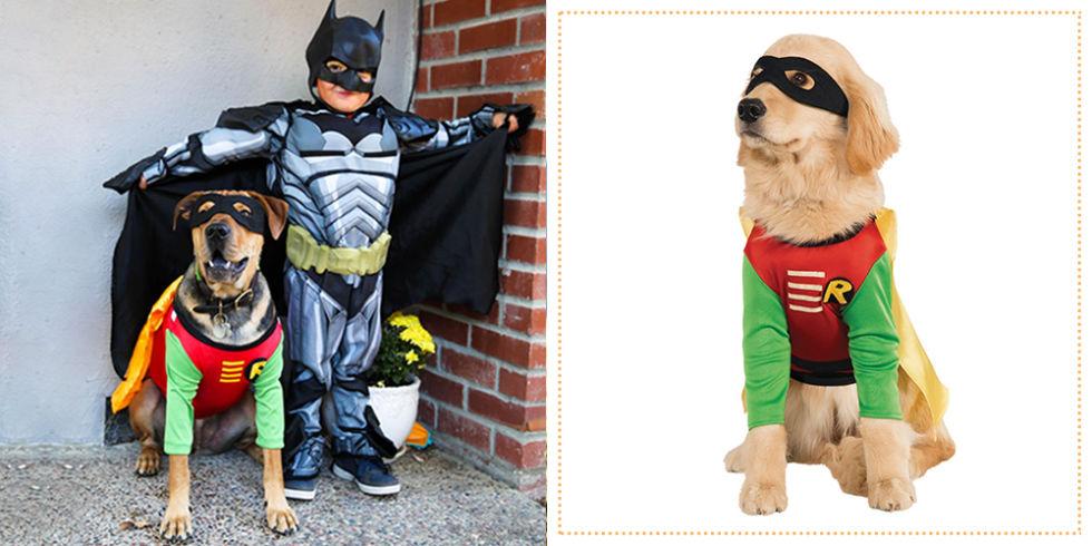 Costume Craze Robin Dog