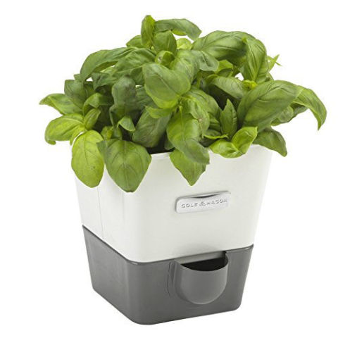 Cole U0026 Mason Self Watering Indoor Herb Garden Planter
