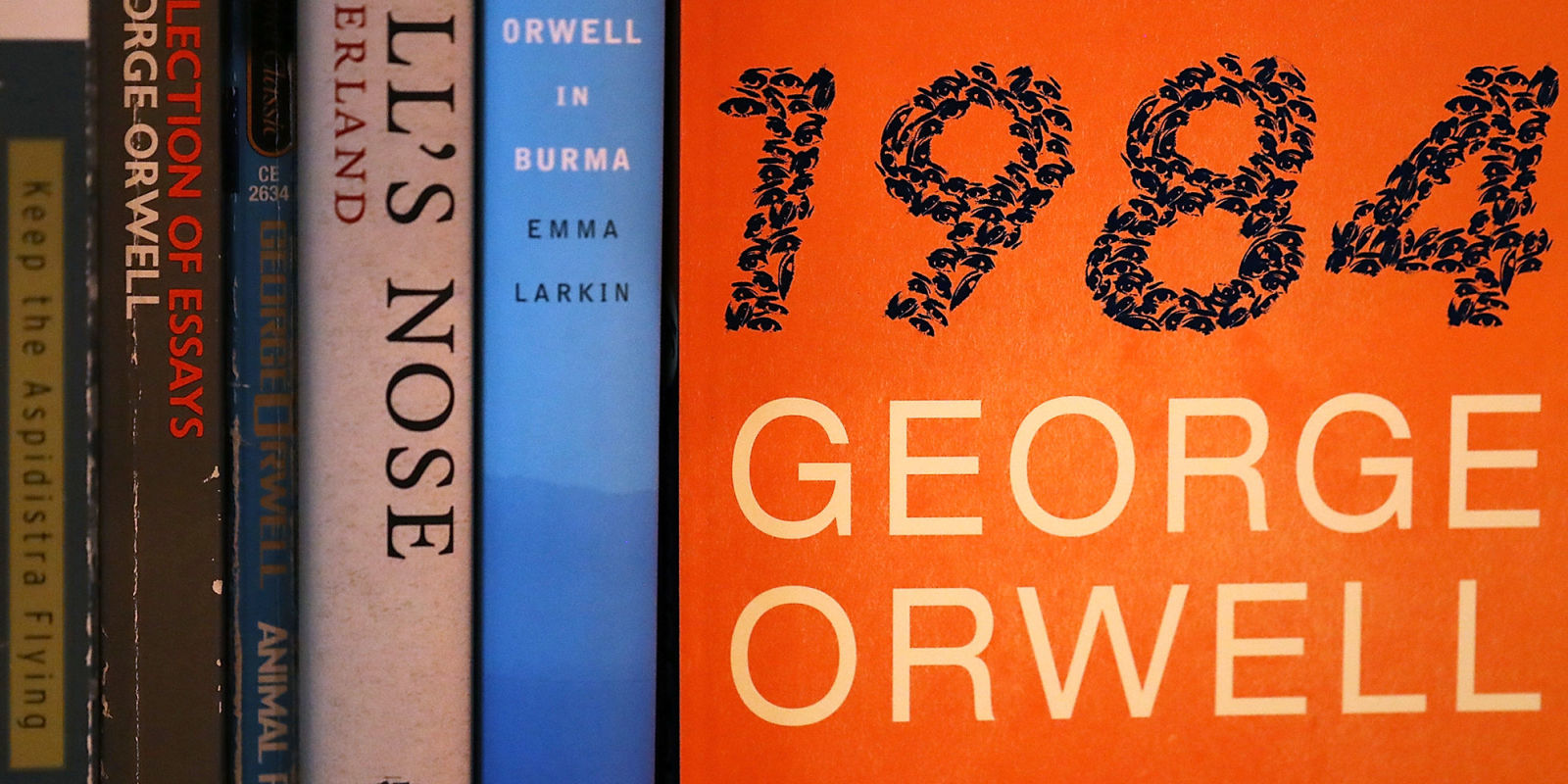 essays on 1984 george orwell