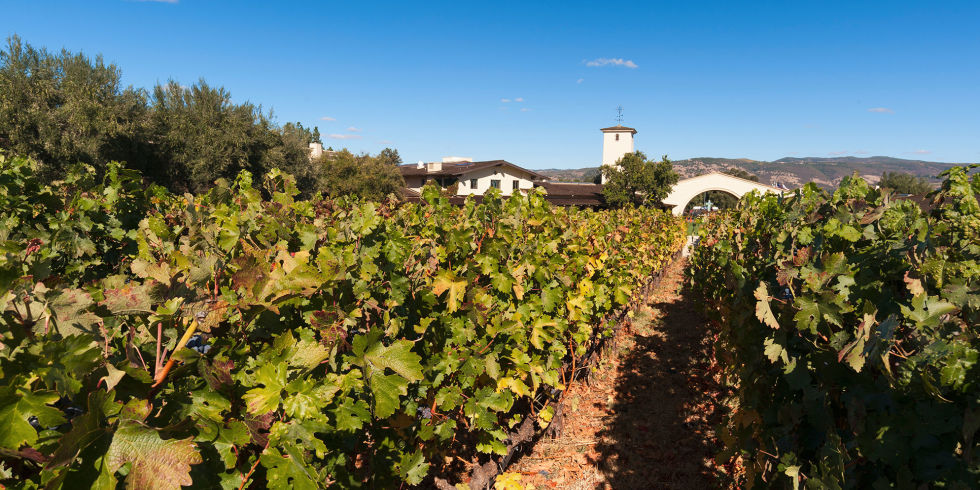 Best Napa Valley Wineries For Top Wineries In Napa Valley - 6 awesome boutique wineries to visit in napa