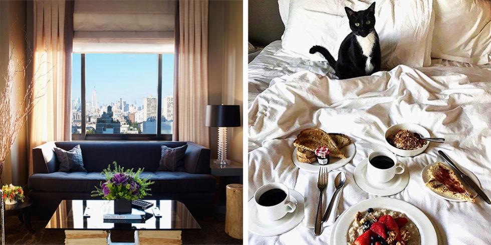 Dog Friendly Hotels Ocean Ss Wa Newatvs Info