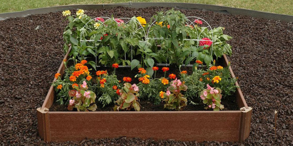 Best Raised Garden Beds