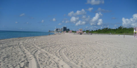 Nude beaches in florida picture 7