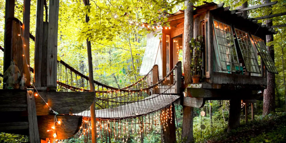 this is the related images of Insane Tree Houses
