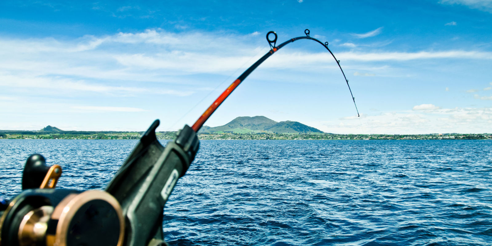 13 best fishing poles in 2018 fishing poles rods and for Best fishing rod for kids