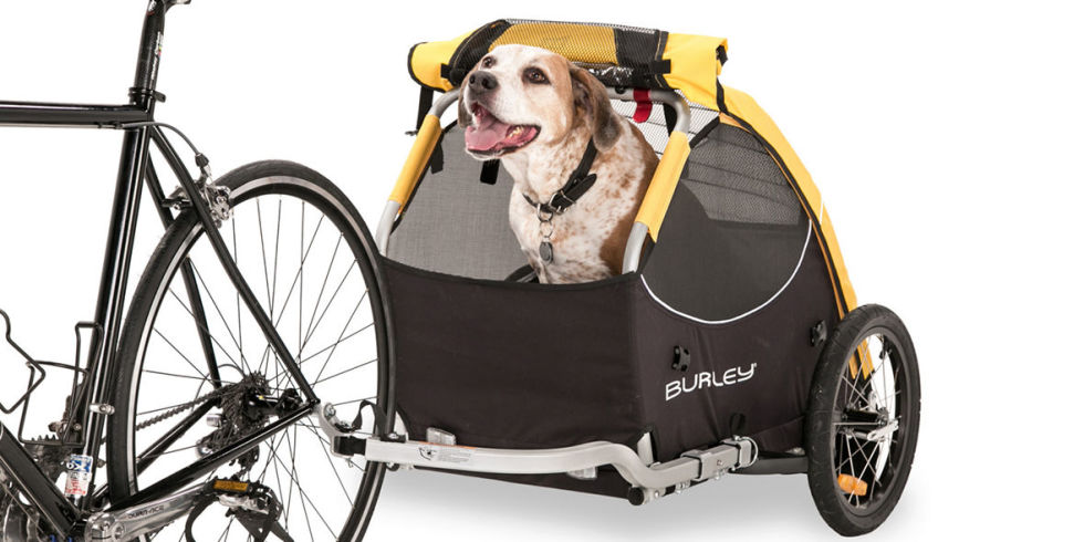 11 Best Bike Trailers For Kids 2018 Bicycle Cargo Trailers And