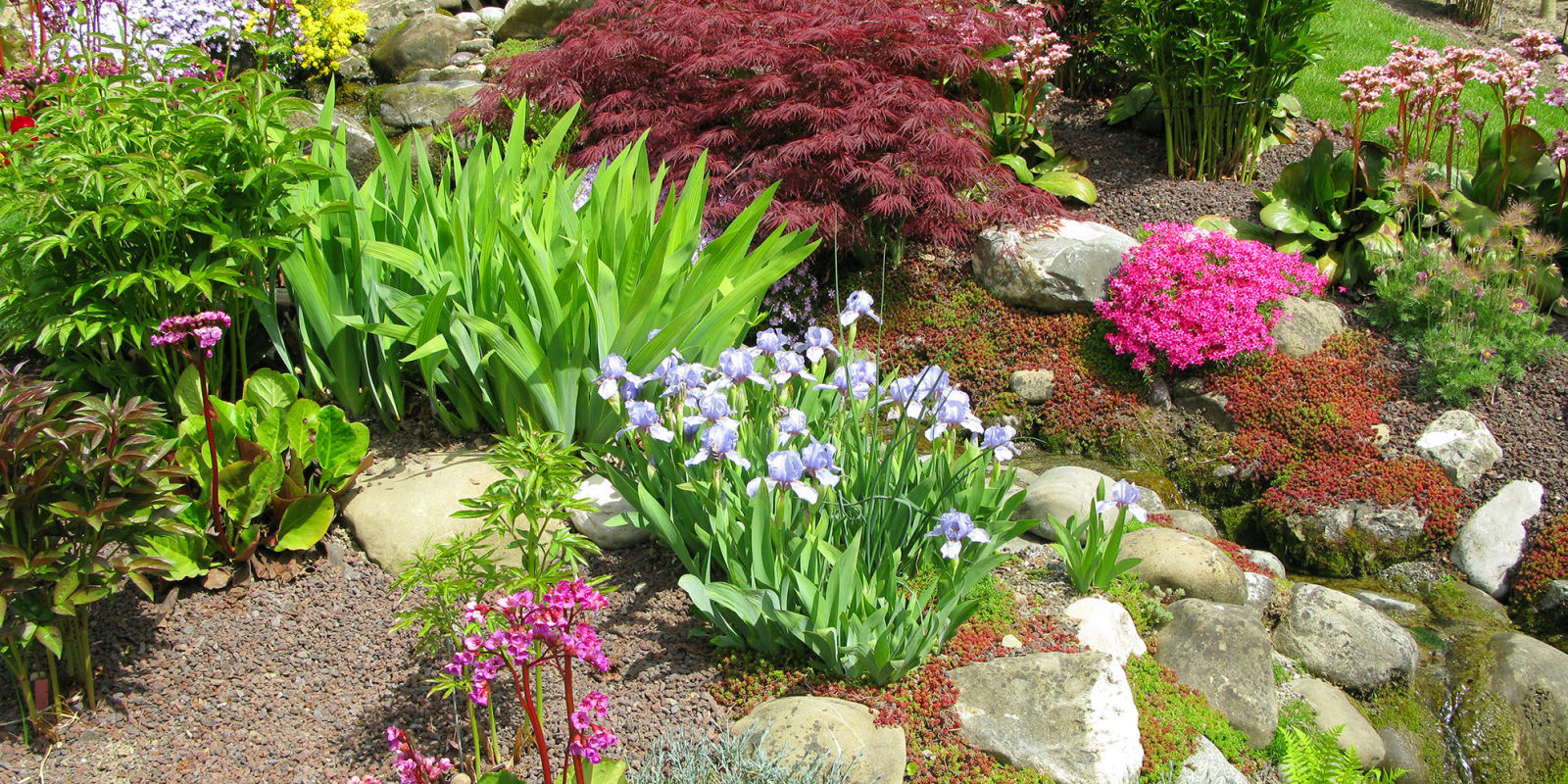 Rock garden ideas to build your own in 2018 step by step for How to landscape a garden