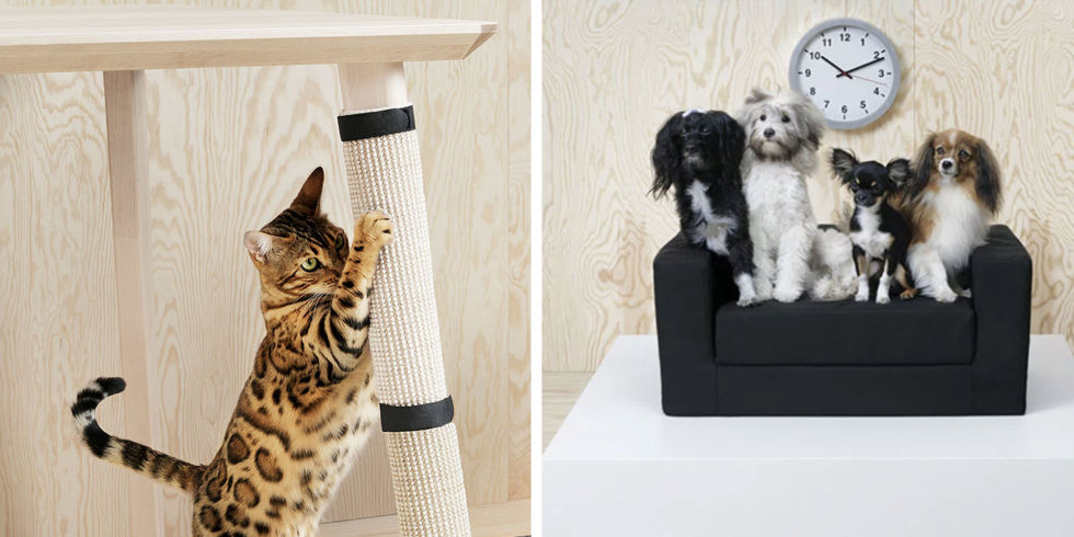 IKEA Furniture For Dogs And Cats