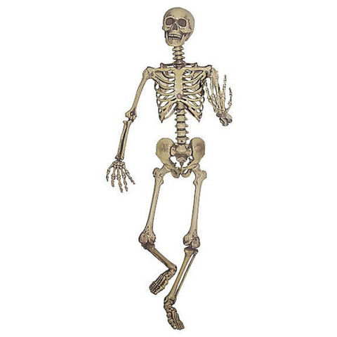spirit halloween hanging skeleton decoration