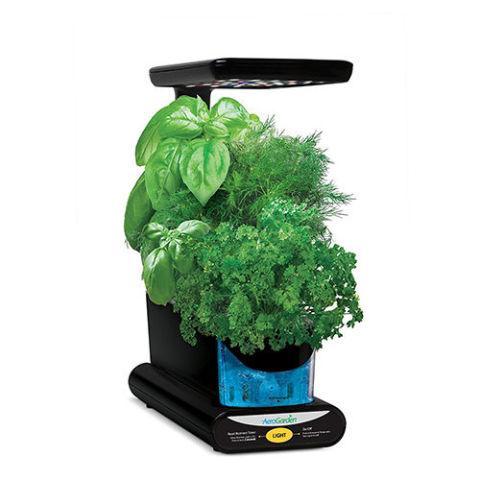 7 Best Indoor Herb Gardens in 2018 - Indoor Gardens for Growing Herbs